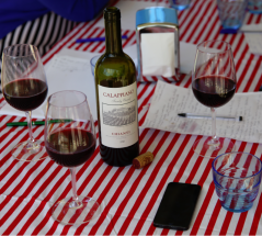 wine wankers wine blogs calappiano chianti a great pizza wine enjoyable red