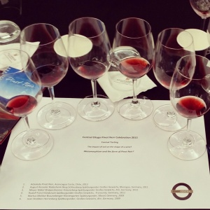 wine wankers central otago pinot celebration 2015 formal tasting