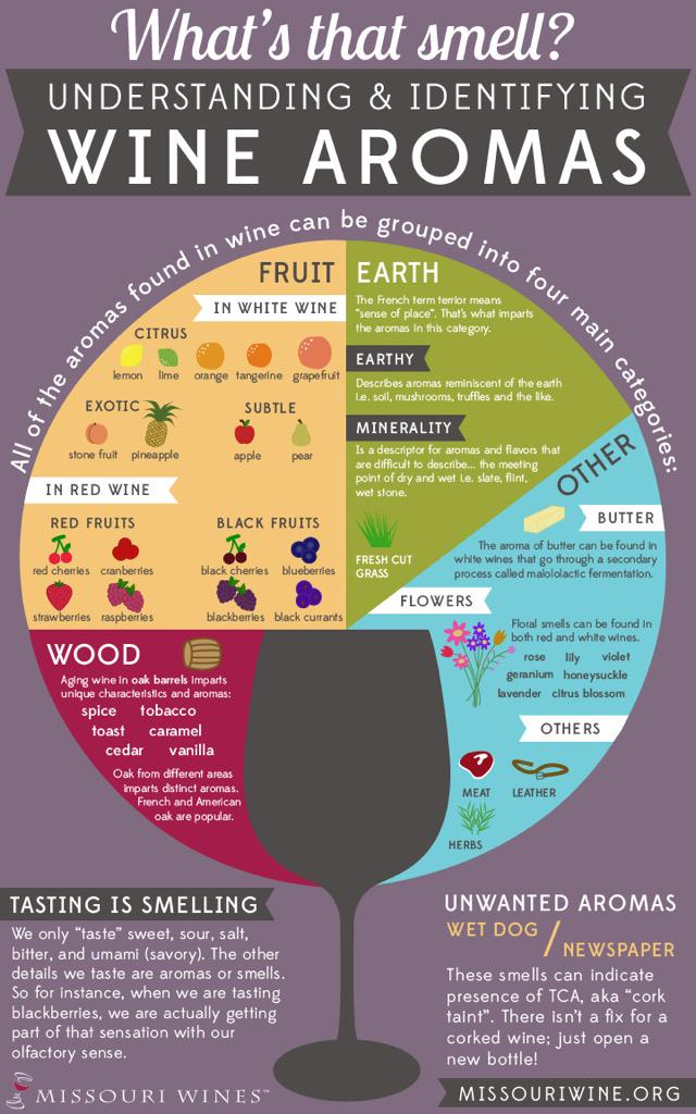 a-wine-aromas-wheel