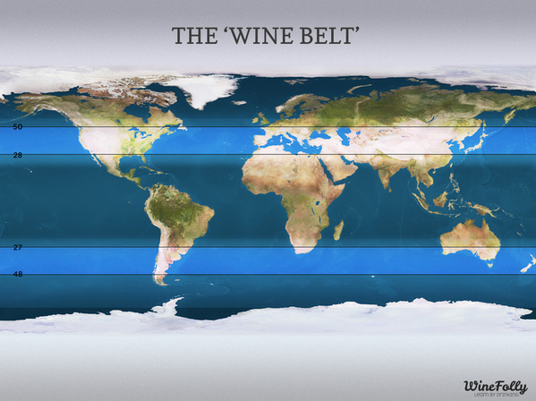 a-wine-belt