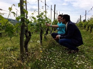 Claudia Cigliuti of Azienda Agricola Cigliuti in Barbaresco takes a visitor for a walk in the vineyards before a wine tasting. Producer visits are some of the most personal in the world.