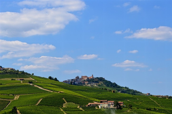In 2014 Piedmont's vineyard landscape in the Langhe, Roero, and Monferrato received UNESCO World Heritage site designation.