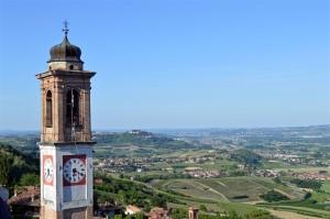 Roero vineyards
