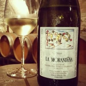wine wankers piemonte trip la morandina moscato
