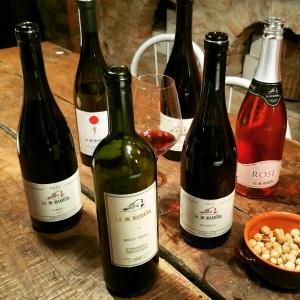 wine wankers piemonte trip la morandina
