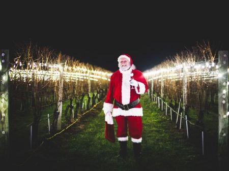 wine wankers christmas images santa in vineyards