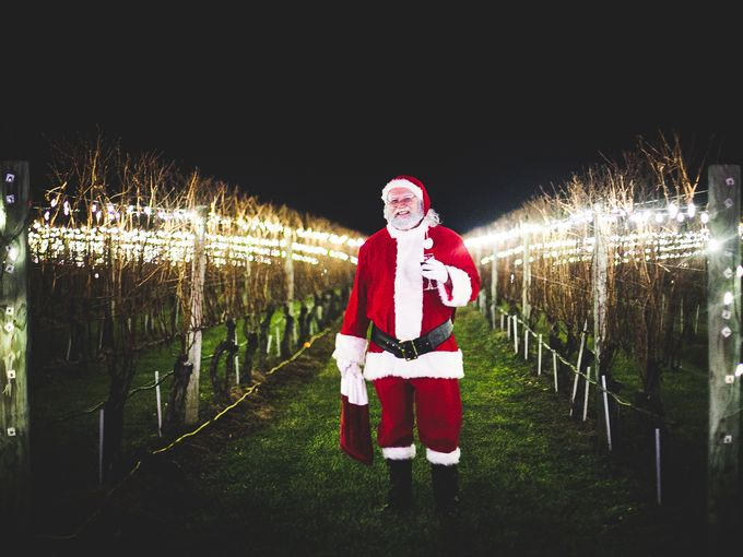 wine wankers christmas images santa in vineyards